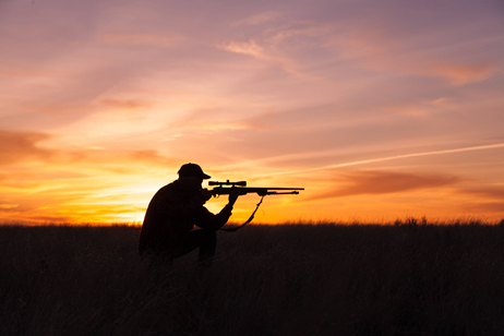hunting at sunset